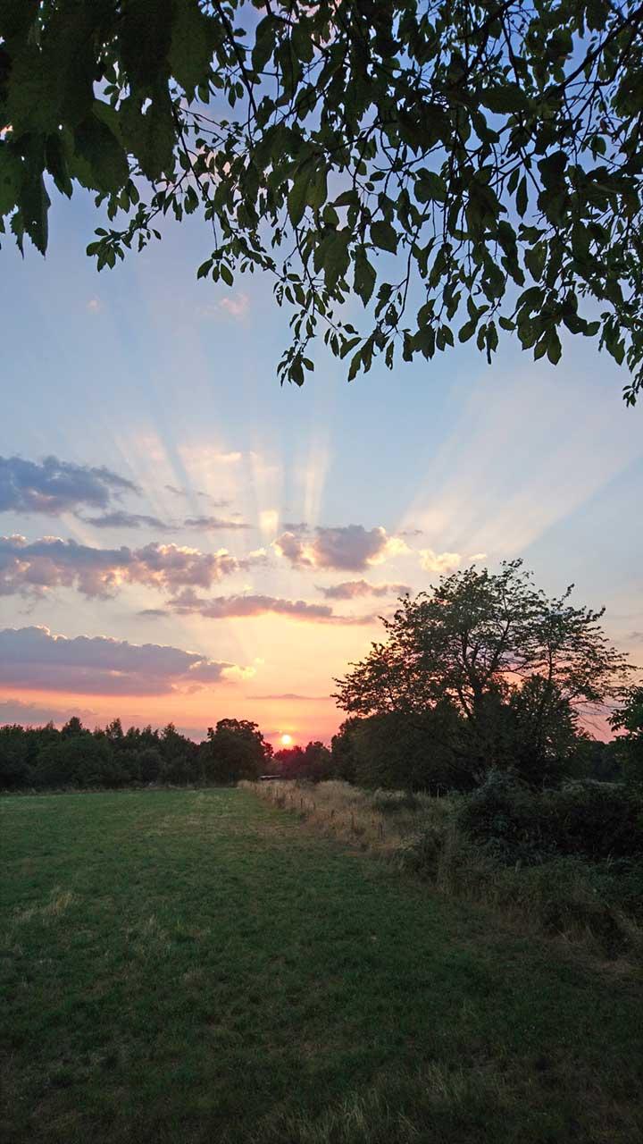 Sonnenuntergang Arzheimer Schanze