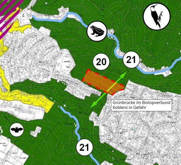 Teilausschnitt Biotopverbund Landschaftsplan Koblenz 2019